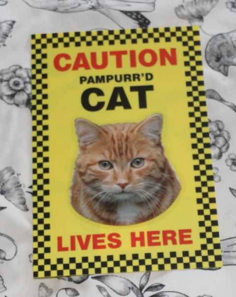 CAUTION PAMPURR'D CAT LIVES HERE (ginger pic) -  CAT SIGN